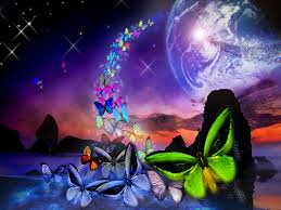 free will butterfly